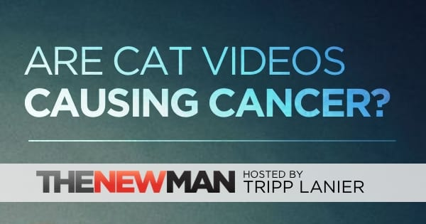 Are Cat Videos Causing Cancer?