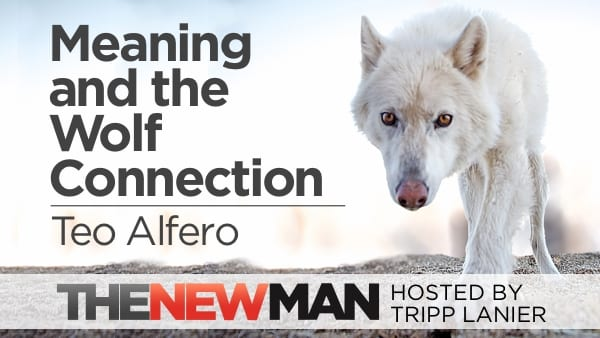 Meaning, Strength, and the Wolf Connection – Teo Alfero